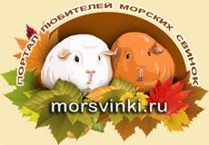 http://forum.morsvinki.ru/images/logo09.jpg